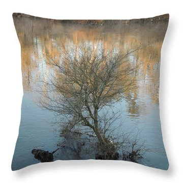 Throw Pillow featuring the photograph Flint River 24 by Kim Pate