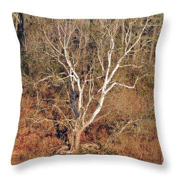 Throw Pillow featuring the photograph Flint River 25 by Kim Pate