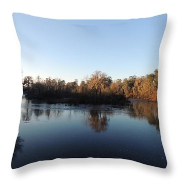 Throw Pillow featuring the photograph Flint River 26 by Kim Pate