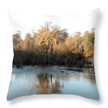 Throw Pillow featuring the photograph Flint River 27 by Kim Pate