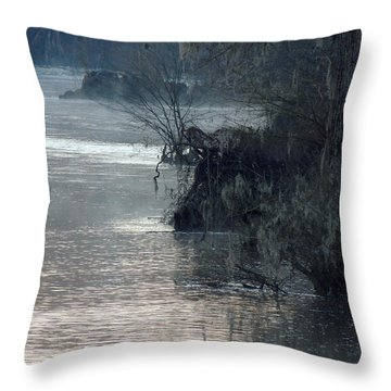 Throw Pillow featuring the photograph Flint River 28 by Kim Pate