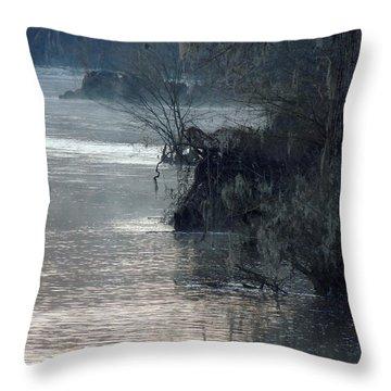Flint River 28 Throw Pillow