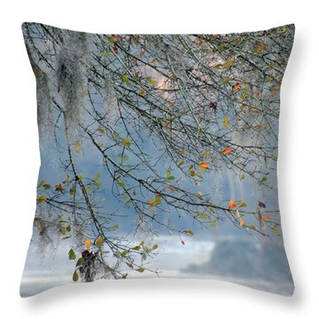 Flint River 29 Throw Pillow by Kim Pate