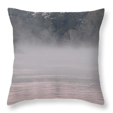 Flint River 3 Throw Pillow by Kim Pate