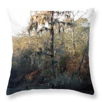 Throw Pillow featuring the photograph Flint River 30 by Kim Pate