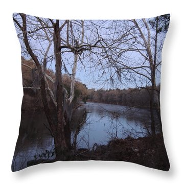 Throw Pillow featuring the photograph Flint River 4 by Kim Pate