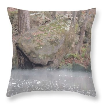 Throw Pillow featuring the photograph Flint River 5 by Kim Pate