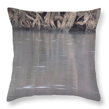 Throw Pillow featuring the photograph Flint River 6 by Kim Pate