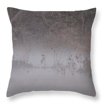 Throw Pillow featuring the photograph Flint River 7 by Kim Pate