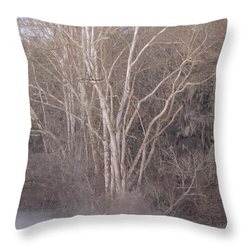 Throw Pillow featuring the photograph Flint River 9 by Kim Pate