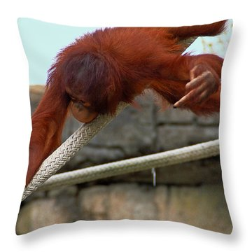 Flippin The Bird Throw Pillow by Aimee L Maher Photography and Art Visit ALMGallerydotcom