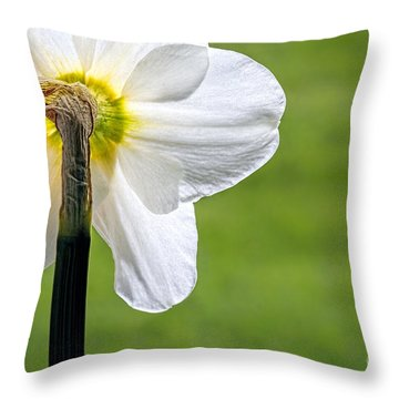Flipside Of A Daffodil Throw Pillow by Madonna Martin
