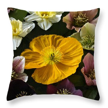 Floating Bouquet Of Early April Flowers Throw Pillow