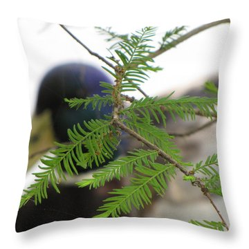 Throw Pillow featuring the photograph Floating By by Beth Vincent
