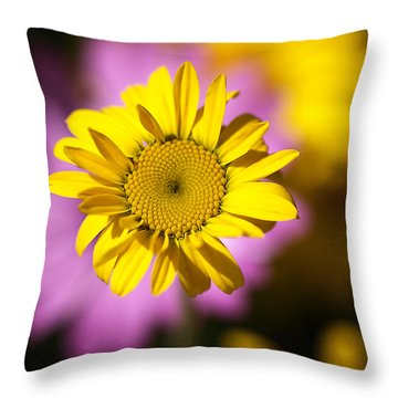 Throw Pillow featuring the photograph Floating Daisy by Joy Watson