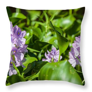 Floating Flowers Throw Pillow by Gregory Daley  PPSA
