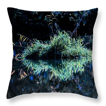 Floating Island Throw Pillow by Leif Sohlman