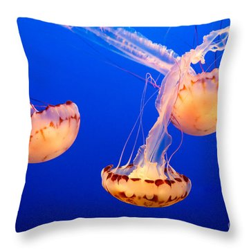 Floating Lanterns Throw Pillow