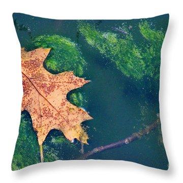 Floating Leaf  Throw Pillow by Karen Adams