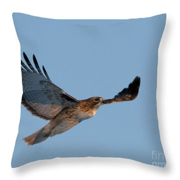 Floating On The Wind Throw Pillow