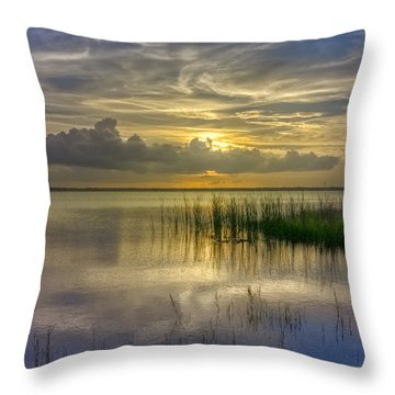 Floating Over The Lake Throw Pillow by Debra and Dave Vanderlaan