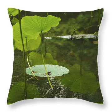 Throw Pillow featuring the photograph Floating World #2 - Lotus Leaves Art Print by Jane Eleanor Nicholas