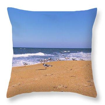 Flock Of Birds On The Beach, Flagler Throw Pillow