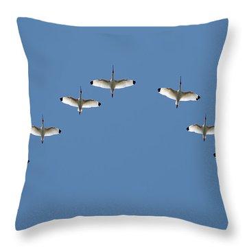 Flock Of White Ibis Throw Pillow
