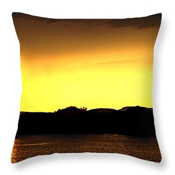 Flood Me With Your Light Throw Pillow by Sharon Soberon