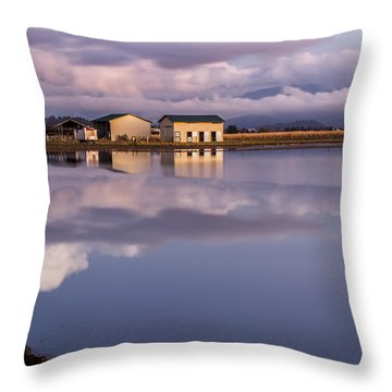 Flood On The Farm Throw Pillow