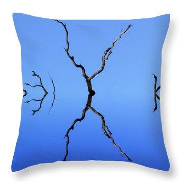 Flood Plain Isolation Throw Pillow