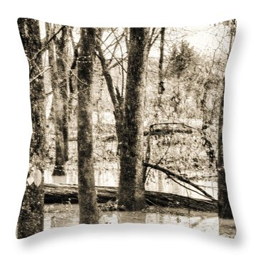 Flood Water Throw Pillow by J Riley Johnson