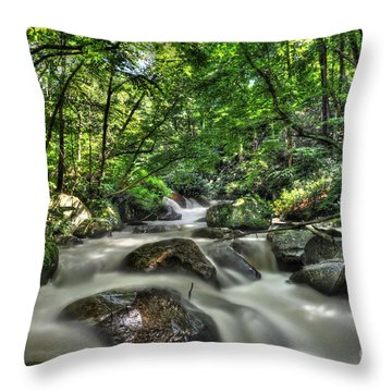 Flooded Small Stream  Throw Pillow by Dan Friend