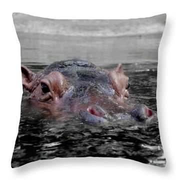 Throw Pillow featuring the photograph Flooding by Michelle Meenawong