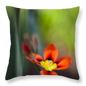 Flora Counterpoint Throw Pillow by Mike Reid