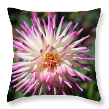 Throw Pillow featuring the photograph Floral Beauty 3  by Christy Pooschke