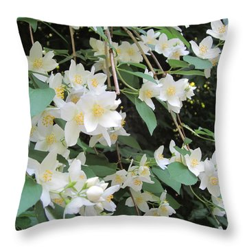 Throw Pillow featuring the photograph Floral Cascade by Pema Hou