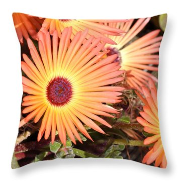 Throw Pillow featuring the photograph Floral by Cathy Mahnke