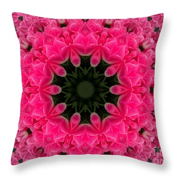 Floral Fantasy - 24 Throw Pillow by Hanza Turgul