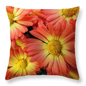 Floral Frenzy 2 Throw Pillow