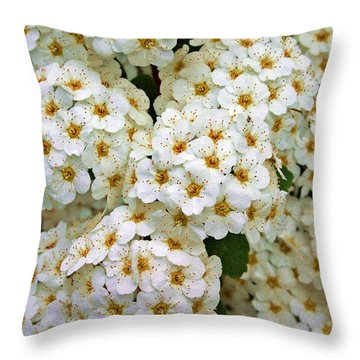 Throw Pillow featuring the photograph Florets by Henry Kowalski