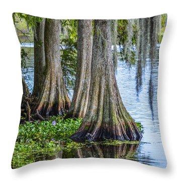 Florida Cypress Trees Throw Pillow