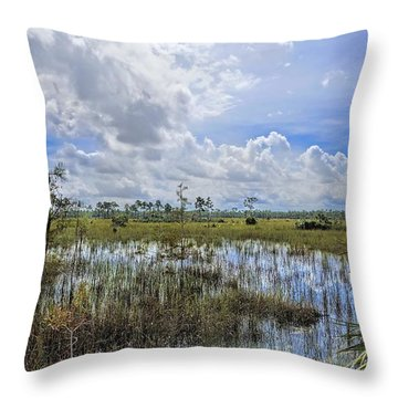 Florida Everglades 0173 Throw Pillow