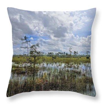 Florida Everglades 0173 Throw Pillow by Rudy Umans