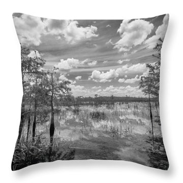 Florida Everglades 5210bw Throw Pillow