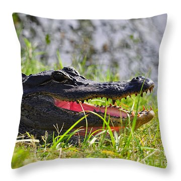 Gator Grin Throw Pillow by Al Powell Photography USA