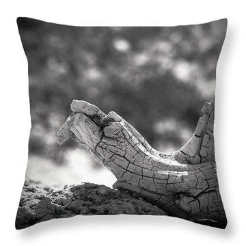 Throw Pillow featuring the photograph Florida Keys Driftwood by Bradley R Youngberg
