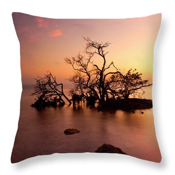 Florida Keys Sunset Throw Pillow by Mike  Dawson