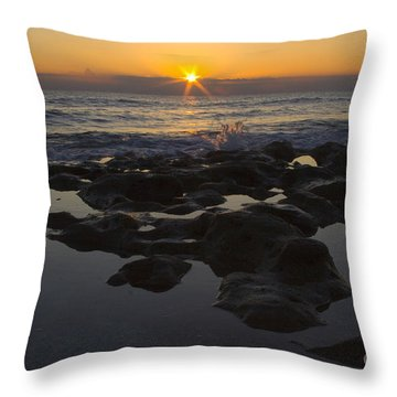 Florida Morning Starlight Throw Pillow by Darleen Stry