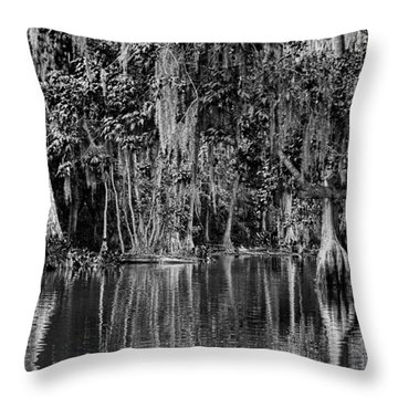 Florida Naturally 2 - Bw Throw Pillow by Christopher Holmes
